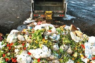 food_waste_Dump1